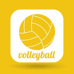 ball sport design