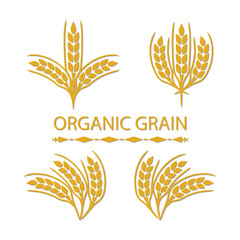 Organic Grain (Wheat)