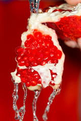 Ripe red pomegranate in water