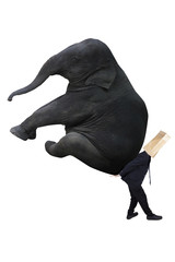 Anonymous businessman carrying elephant