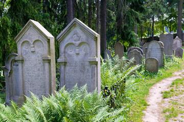 Jewish cementery, Trebic (UNESCO), Czech republic