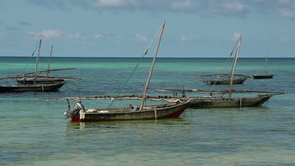 Zanzibar dhows anchored in the clear coastal waters