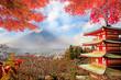 Fuji Mountaion with nice maple - 72851954