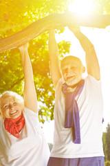 Zwei Senioren machen Klimmzüge am Ast