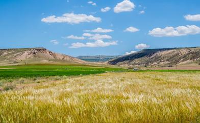 Hill on the grassland , Cappadocia , Turkey