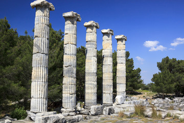 Ancient Columns in Priene