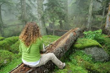 Personne méditant dans un bois
