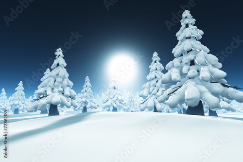 canvas print picture Snow forest
