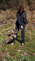 Addestramento cane bassotto