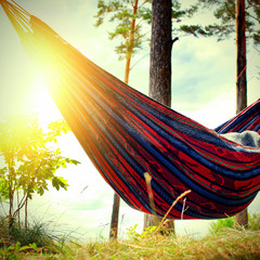 Hammock in the Forest