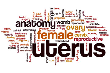 Uterus word cloud