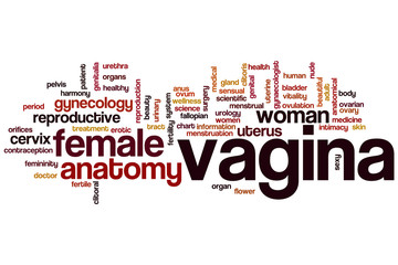 Vagina word cloud