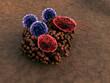 fungus, virus - 72868370