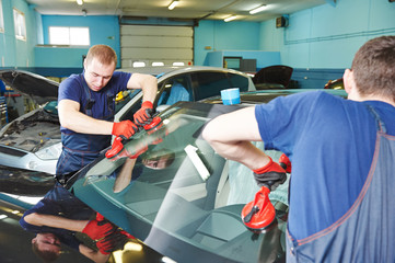 windshield windscreen replacement