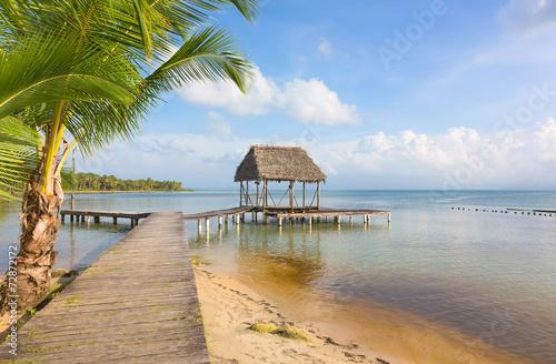 Fotobehang Centraal-Amerika Landen Pier on Boca del Drago beach, Panama