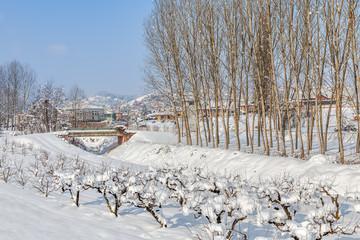 Rural winter view.
