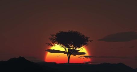 4K - Desert sunrise