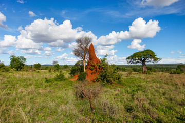 Beautiful landscape in Africa