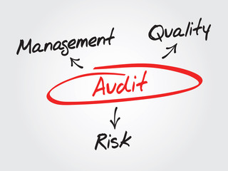 Audit process vector concept diagram