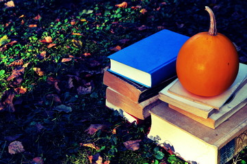 Old books on grass