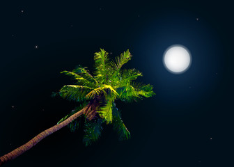 jungle at night. Vector background with moon and palm