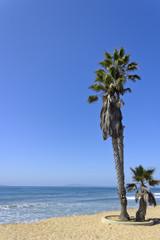 Ventura City Beach, CA