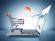 goldfish in cart - e-commerce concept - 72884317