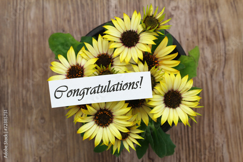 Foto op Canvas Madeliefjes Congratulations card with yellow daisies