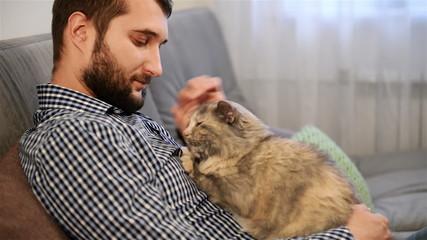 young adult man fondles and caresses  cat. close-up