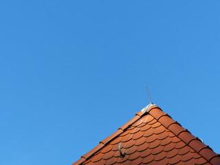 Rotbraune Schindel an einem Dach in Oerlinghausen bei Detmold