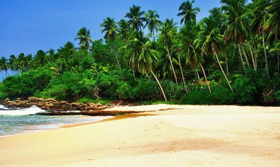 Beach on Sri Lanka.