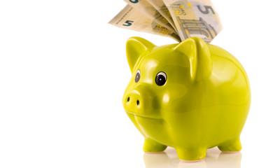 Sparschwein mit 5 Euro Noten