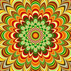 Colorful flower striped mandala