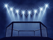 MMA cage and floodlights , MMA arena - 72887382