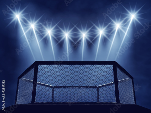 Foto op Plexiglas Stadion MMA cage and floodlights , MMA arena