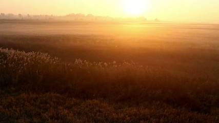 Sunrise over the meadow in a foggy autumn day. Aerial shot.