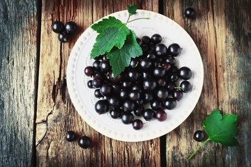fresh black currant