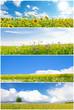 canvas print picture - Blumenwiesen - Fotocollage mit Panoramen