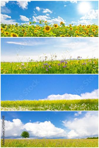 canvas print picture Blumenwiesen - Fotocollage mit Panoramen