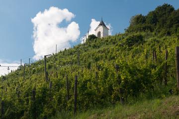 Piramida Hill in Maribor