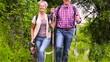 Happy senior couple hiking with dog