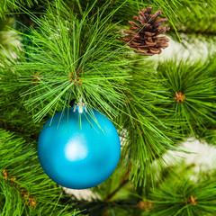 Christmas ball on fir branches. xmas decoration