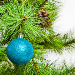 Christmas ball on fir branches. xmas decoration