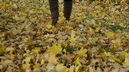 Woman walking on fallen yellow maple leaves in autumn