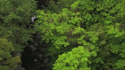 緑の渓谷4