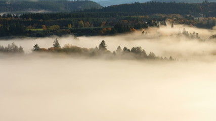 Time Lapse of Rolling Fog Over Mount Hood National Forest Autumn