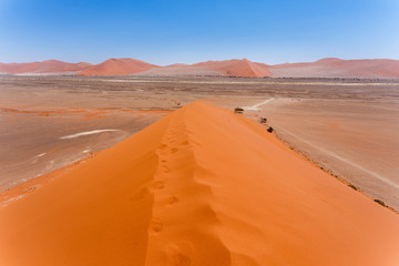 Dune 45 in sossusvlei Namibia, view from the top