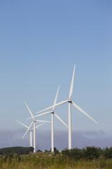 Wind turbine farm, UK.