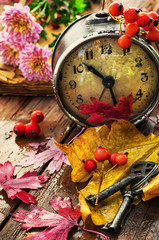 old-fashioned clock in rainy weather with fallen leaves