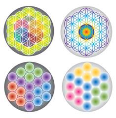 Ensemble Symboles Fleur de Vie - Multicolore - Arc-en-Ciel
